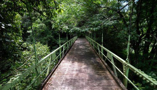 県境に鎮座する神社ってなに?長野県道1号線は愛知県と静岡県に続く!?ほか