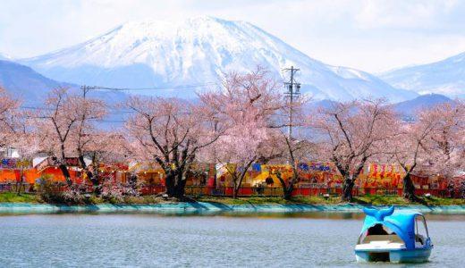 桜前線がやってきた!長野県須坂市の臥竜(がりゅう)公園の桜とまっくろおでん